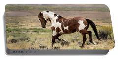 Picasso Strutting His Stuff Portable Battery Charger by Nadja Rider