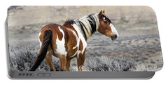 Picasso - Wild Mustang Stallion Of Sand Wash Basin Portable Battery Charger by Nadja Rider