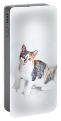 Picture Purfect Portable Battery Charger