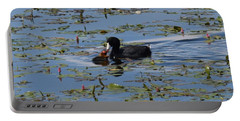 Pied Billed Grebe Lake John Swa Co Portable Battery Charger