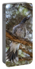 Pied Currawong Chick 1 Portable Battery Charger