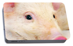 Pig Art - Pretty In Pink Portable Battery Charger by Sharon Cummings