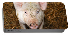 Pig Portable Battery Charger