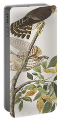 Pigeon Hawk Portable Battery Charger by John James Audubon