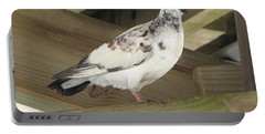 Pigeon Under Daytona Beach Pier  Portable Battery Charger
