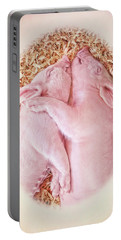 Portable Battery Charger featuring the photograph Piglet Love by Jennie Marie Schell