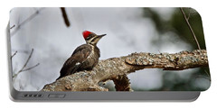 Portable Battery Charger featuring the photograph pileated Woodpecker 1068  by Michael Peychich