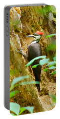 Pileated Woodpecker Portable Battery Charger by Sean Griffin
