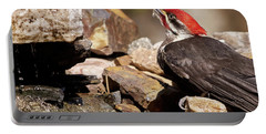 Pileated Woodpecker2 Portable Battery Charger