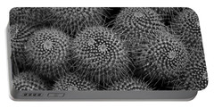 Portable Battery Charger featuring the photograph Pincushion Cactus In Black And White by Michiale Schneider