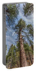 Pine Cathedral On The West Fork Portable Battery Charger