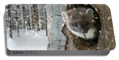 Pine Marten In Tree In Winter Portable Battery Charger