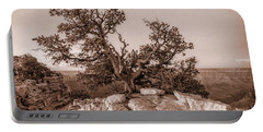 Pine Tree Grand Canyon Monotone 7r2_dsc1823_08142017 Portable Battery Charger