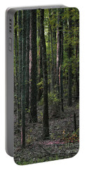 Portable Battery Charger featuring the photograph Pine Wood Sunrise by Skip Willits