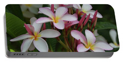 Portable Battery Charger featuring the photograph Pink And White Plumeria by Pamela Walton