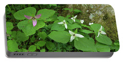Pink And White Trillium Portable Battery Charger by Alan Lenk