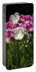 Portable Battery Charger featuring the photograph Pink And White Tulips by Angela DeFrias