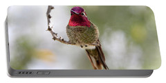 Pink Anna's Hummingbird Portable Battery Charger