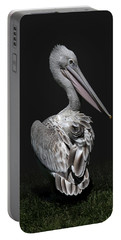 Pink-backed Pelican Rear View Portable Battery Charger