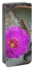 Portable Battery Charger featuring the photograph Pink Beavertail Cactus  by Saija Lehtonen