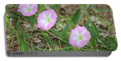Portable Battery Charger featuring the photograph Pink Bindweed by Ann E Robson