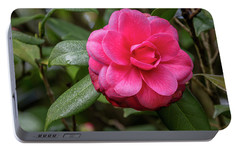 Portable Battery Charger featuring the photograph Pink Camelia 02 by Gregory Daley  PPSA