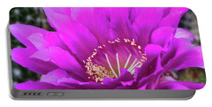 Portable Battery Charger featuring the photograph Pink Echinopsis Bloom  by Saija Lehtonen