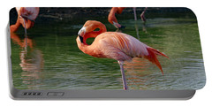 Portable Battery Charger featuring the photograph Pink Flamingo by Scott Carruthers