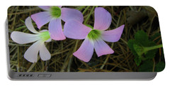 Portable Battery Charger featuring the photograph Pink Glow by Donna Brown