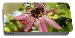 Pink Passiflora Portable Battery Charger by Elvira Ladocki