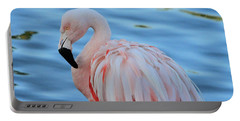 Pink Pose Portable Battery Charger by Shoal Hollingsworth