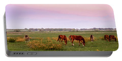 Portable Battery Charger featuring the photograph Pink Sky Night by Melinda Ledsome