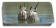 Portable Battery Charger featuring the photograph Pintail Ducks Dive by Tam Ryan