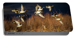 Pintails And Wigeons Portable Battery Charger