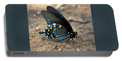 Pipevine Swallowtail Close-up Portable Battery Charger