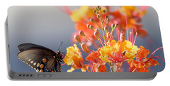 Portable Battery Charger featuring the photograph Pipevine Swallowtail by Dan McManus