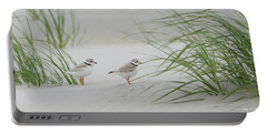 Piping Plovers Portable Battery Charger