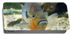 Piranha Behind Glass Portable Battery Charger