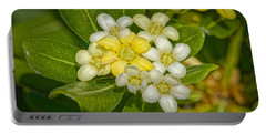 Pittosporum Flowers Portable Battery Charger