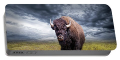 Plains Buffalo On The Prairie Portable Battery Charger