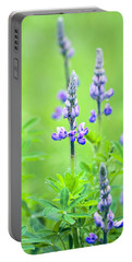 Lupine With Web Portable Battery Charger