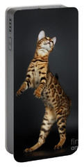 Playful Female Bengal Cat Stands On Rear Legs Portable Battery Charger by Sergey Taran