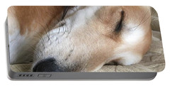 Please Be Quiet. Saluki Portable Battery Charger