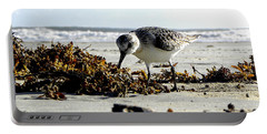Plover On Daytona Beach Portable Battery Charger