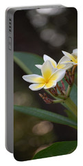 Plumeria II Portable Battery Charger by Robert Meanor
