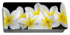 Portable Battery Charger featuring the photograph Plumeria Obtusa Singapore White by Sharon Mau