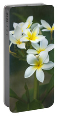 Plumerias On A Cloudy Day Portable Battery Charger