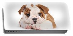 Po-faced Bulldog Portable Battery Charger