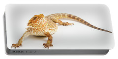 Pogona Isolated Portable Battery Charger
