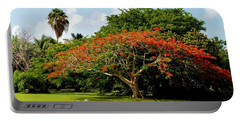 Poinciana Portable Battery Charger